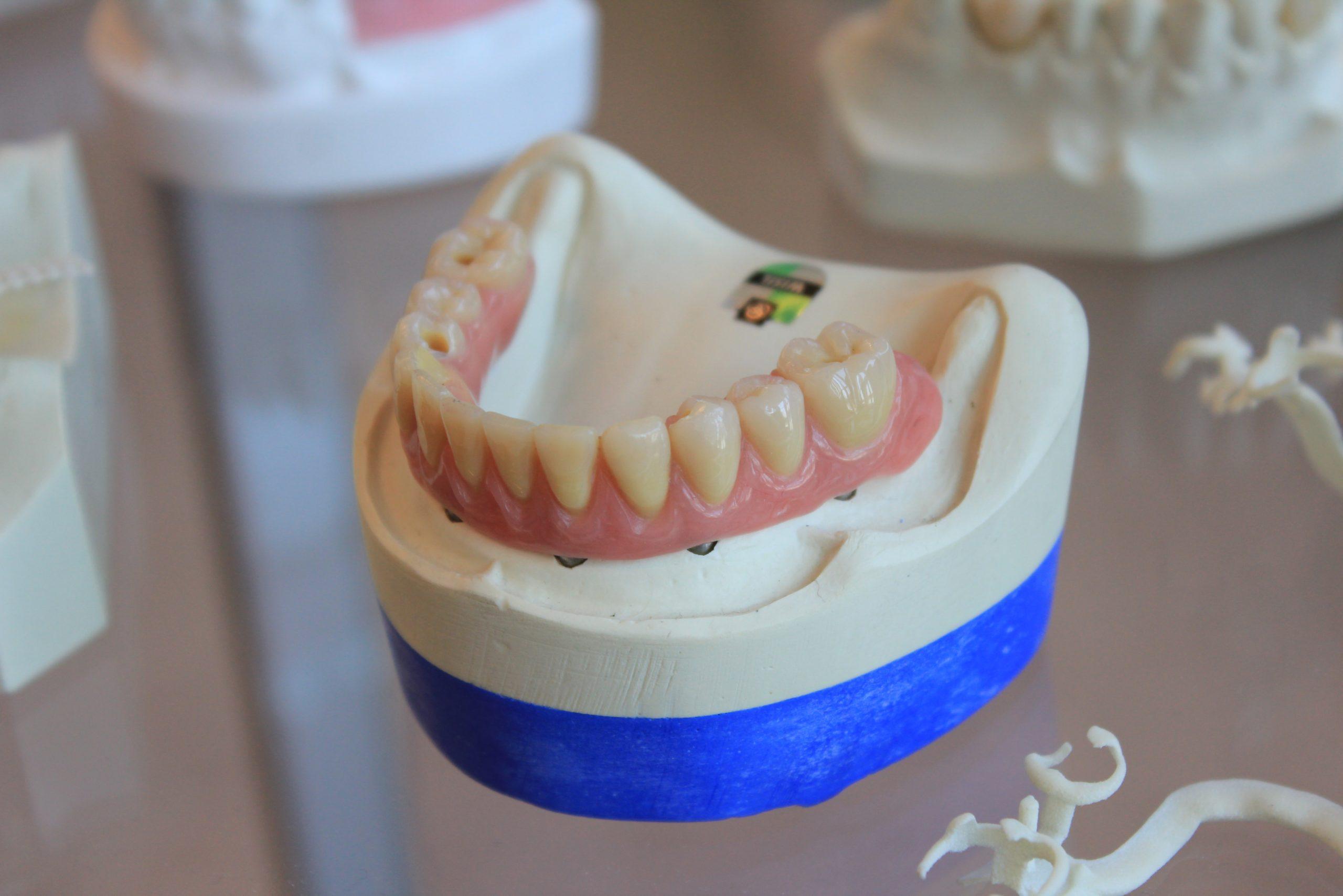 【Japanese Vocabulary】Teeth:歯(は)