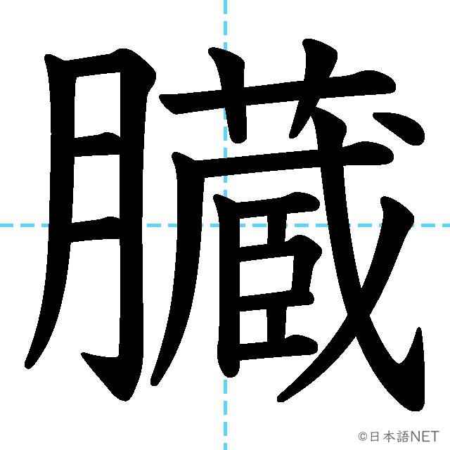 【JLPT N2 Kanji】臓
