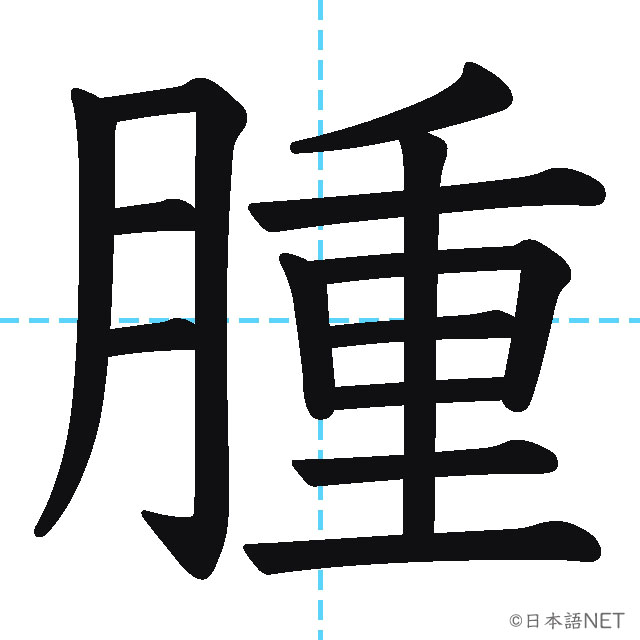 【JLPT N1 Kanji】腫